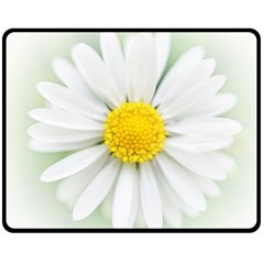 Art Daisy Flower Art Flower Deco Fleece Blanket (medium)  by Nexatart