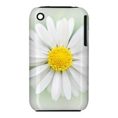Art Daisy Flower Art Flower Deco Iphone 3s/3gs