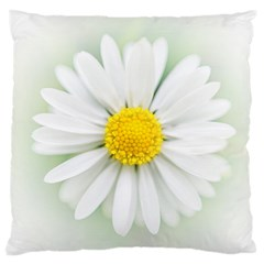 Art Daisy Flower Art Flower Deco Standard Flano Cushion Case (one Side) by Nexatart