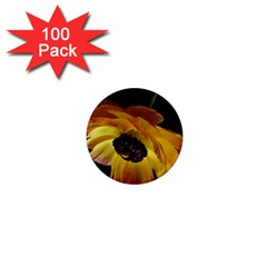 Ranunculus Yellow Orange Blossom 1  Mini Magnets (100 Pack)