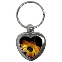 Ranunculus Yellow Orange Blossom Key Chains (heart)  by Nexatart