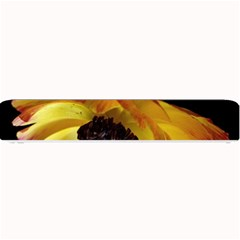 Ranunculus Yellow Orange Blossom Small Bar Mats
