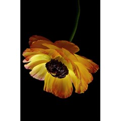 Ranunculus Yellow Orange Blossom 5 5  X 8 5  Notebooks