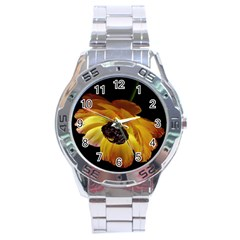 Ranunculus Yellow Orange Blossom Stainless Steel Analogue Watch by Nexatart