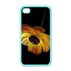 Ranunculus Yellow Orange Blossom Apple Iphone 4 Case (color)