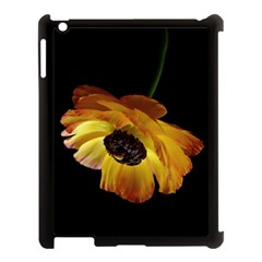Ranunculus Yellow Orange Blossom Apple Ipad 3/4 Case (black) by Nexatart