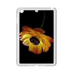 Ranunculus Yellow Orange Blossom Ipad Mini 2 Enamel Coated Cases by Nexatart