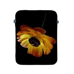 Ranunculus Yellow Orange Blossom Apple Ipad 2/3/4 Protective Soft Cases by Nexatart