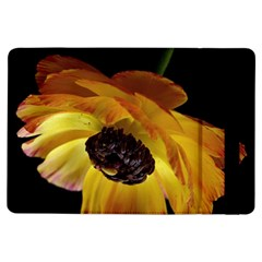 Ranunculus Yellow Orange Blossom Ipad Air Flip by Nexatart