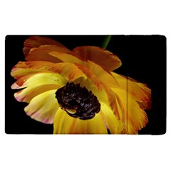 Ranunculus Yellow Orange Blossom Apple Ipad Pro 9 7   Flip Case by Nexatart