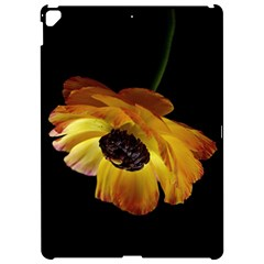 Ranunculus Yellow Orange Blossom Apple Ipad Pro 12 9   Hardshell Case by Nexatart