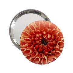 Dahlia Flower Joy Nature Luck 2 25  Handbag Mirrors