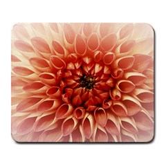 Dahlia Flower Joy Nature Luck Large Mousepads
