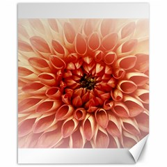 Dahlia Flower Joy Nature Luck Canvas 16  X 20