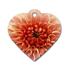 Dahlia Flower Joy Nature Luck Dog Tag Heart (two Sides)
