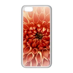 Dahlia Flower Joy Nature Luck Apple Iphone 5c Seamless Case (white)
