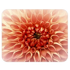 Dahlia Flower Joy Nature Luck Double Sided Flano Blanket (medium)  by Nexatart