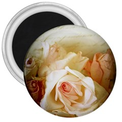 Roses Vintage Playful Romantic 3  Magnets