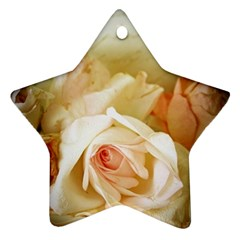 Roses Vintage Playful Romantic Ornament (star) by Nexatart