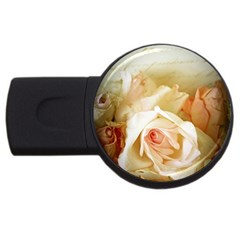 Roses Vintage Playful Romantic Usb Flash Drive Round (2 Gb)