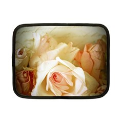 Roses Vintage Playful Romantic Netbook Case (small)