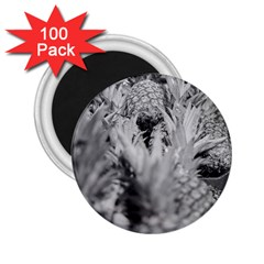 Pineapple Market Fruit Food Fresh 2 25  Magnets (100 Pack)