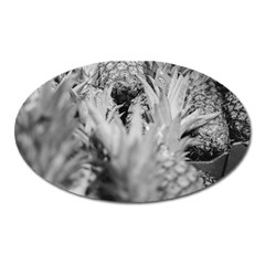 Pineapple Market Fruit Food Fresh Oval Magnet