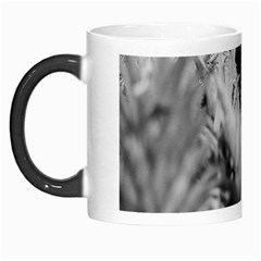 Pineapple Market Fruit Food Fresh Morph Mugs