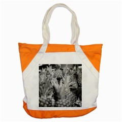 Pineapple Market Fruit Food Fresh Accent Tote Bag by Nexatart