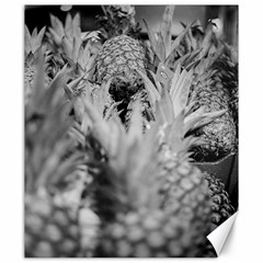 Pineapple Market Fruit Food Fresh Canvas 20  X 24