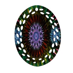 Flower Stigma Colorful Rainbow Animation Gold Space Oval Filigree Ornament (two Sides) by Mariart