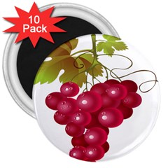 Red Fruit Grape 3  Magnets (10 Pack)  by Mariart