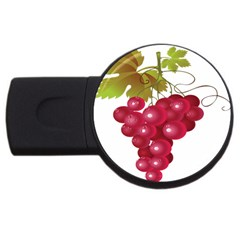 Red Fruit Grape Usb Flash Drive Round (2 Gb) by Mariart