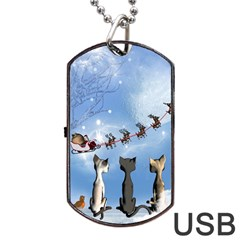 Christmas, Cute Cats Looking In The Sky To Santa Claus Dog Tag Usb Flash (two Sides) by FantasyWorld7