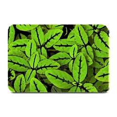 Nature Print Pattern Plate Mats by dflcprints