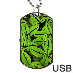 Nature Print Pattern Dog Tag Usb Flash (one Side) by dflcprints