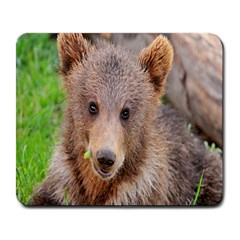 Baby Bear Animals Large Mousepads by Mariart