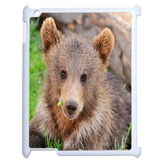Baby Bear Animals Apple Ipad 2 Case (white) by Mariart