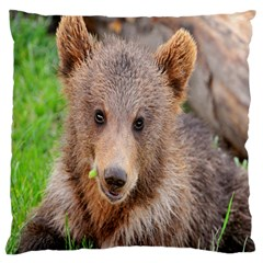 Baby Bear Animals Large Cushion Case (two Sides) by Mariart