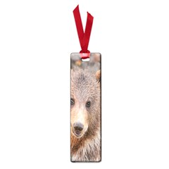 Baby Bear Animals Small Book Marks by Mariart