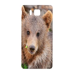 Baby Bear Animals Samsung Galaxy Alpha Hardshell Back Case by Mariart