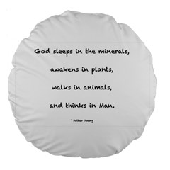 Inspirational Quote (arthur Young) Large 18  Premium Flano Round Cushions by DeneWestUK