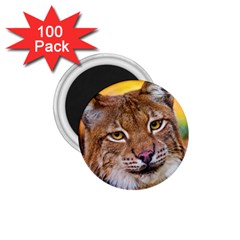Tiger Beetle Lion Tiger Animals 1 75  Magnets (100 Pack)  by Mariart