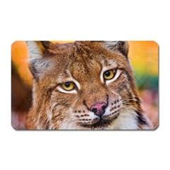 Tiger Beetle Lion Tiger Animals Magnet (rectangular) by Mariart
