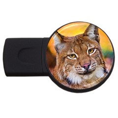 Tiger Beetle Lion Tiger Animals Usb Flash Drive Round (4 Gb) by Mariart