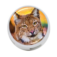 Tiger Beetle Lion Tiger Animals 4 Port Usb Hub (two Sides)  by Mariart