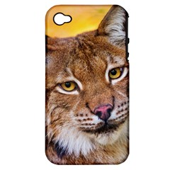 Tiger Beetle Lion Tiger Animals Apple Iphone 4/4s Hardshell Case (pc+silicone) by Mariart