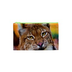 Tiger Beetle Lion Tiger Animals Cosmetic Bag (xs) by Mariart