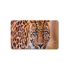 Tiger Beetle Lion Tiger Animals Leopard Magnet (name Card) by Mariart