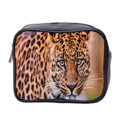 Tiger Beetle Lion Tiger Animals Leopard Mini Toiletries Bag 2 Side by Mariart